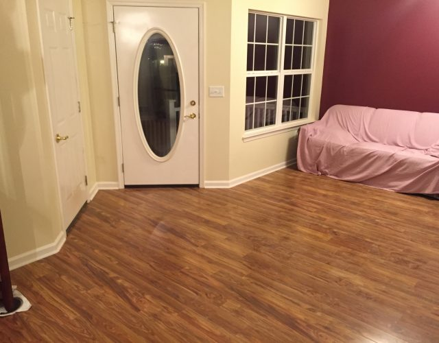 laminate hardwood floor in entry way